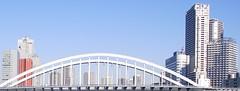 TOKYO SUMIDA RIVER BRIDGE (patrick555666751) Tags: tokyo sumida river bridge bridges ponts pont puente puentes riviere tokyosumidariverbridge nihon nippon cipango jipangu japao giappone japo edo kanto honshu tokio toquio japon japan asie est east asia brucke
