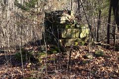 "Ruins (fireplace and hearth) of Old W P ""Pickle"" Edgmon Homesite - Upper Buffalo River Wilderness Area, Northwest Arkansas (danjdavis) Tags: edgmonhomesite oldhomesite riuins upperbuffaloriverwildernessarea arkansas fierplace hearth stone"