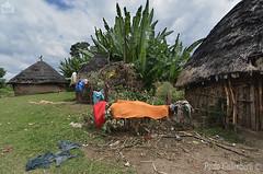 villaggio, poor dwellings (paolo.gislimberti) Tags: etiopia ethiopia case houses povertà poverty quotidianità everyday capanne