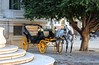 Séville (hans pohl) Tags: espagne séville andalousie arbres trees animals animaux calèche escaliers stairways nature cheveaux horses