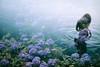 沐浴の朝 -purify my soul (Hodaka Yamamoto) Tags: lomography lomolca negative filmcamera filmphotography film lake silhouette flower summer double doubles doubleexposure multipleexposure multiexposure sea morning park rain reflection
