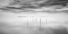 Reeds and Islands (DavidFrutos) Tags: davidfrutos losurrutias cartagena murcia cabocervera sea mediterranean sunrise amanecer minimal minimalism minimalismo minimalist neutraldensity densidadneutra filtro filtros filter filters hitech bw playa beach nd gnd canondslr 5dmarkii canon1740mm longexposure largaexposición le lee monocromo monochrome greyscale nature naturaleza landscape seascape waterscape atmosphere ambiance fineart bn reflejos reflections nubes nube silverefexpro2