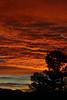 Sunrise 1 19 17 #39 (Az Skies Photography) Tags: sun rise sunrise morning dawn daybreak sky skyline skyscape rio rico arizona az riorico rioricoaz arizonasky arizonaskyline arizonaskyscape arizonasunrise red orange yellow gold golden salmon black canon eos rebel t2i canoneosrebelt2i eosrebelt2i january 19 2017 january192017 11917 1192017
