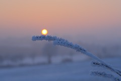 Balance (Xtraphoto) Tags: eis ice winter gefroren frost frosty frozen sonnenuntergang sonne sunset sun balancieren balance