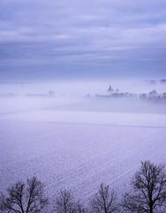 View on mist covered fields in Wageningen