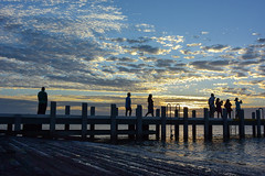 Platform for photographers (Marian Pollock) Tags: australia victoria melbourne brightonbeach sunset clouds pier people summer colourful silhouette photographers beach portphillipbay ocean dusk sun cloud