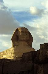 Ägypten 1999 (645) Kairo: Große Sphinx, Gizeh (Rüdiger Stehn) Tags: archäologie archäologischefundstätte sphinx grosesphinxvongizeh giseh gise giza aldschīza alǧīza ilgīza afrika ägypten egypt nordafrika nordägypten bauwerk sakralbau historischesbauwerk urlaub dia minoltasrt100x analogfilm scan slide diapositivfilm analog kleinbild kbfilm 35mm canoscan8800f unescowelterbe unescoweltkulturerbe nekropole altägypten ancientegypt misr unterägypten addiltā welterbe weltkulturerbe ägyptologie reise reisefoto winter 1990er 1990s 1999