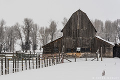 Barn in Snow (James Neeley) Tags: idaho tetonvalley barn jamesneeley