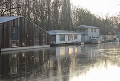 (mennomenno.) Tags: houseboat woonboten derotte rivier river rotterdam ijs ice reflections reflecties thenetherlands tegenlicht backlight