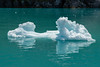 20160701-_1JJ6664 (johnsonjeffrey11) Tags: alaska floatingice