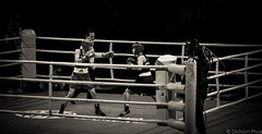 Throwing a punch (gunman47) Tags: b sea bw white black monochrome sepia asian thailand mono 1 hall singapore asia expo south w games anh east vietnam le wait punch boxing defensive result thi umpire 2015 ngoc raksat chuthamat