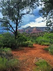 Natural framing - iPhone (Jim Nix / Nomadic Pursuits) Tags: travel arizona southwest landscape sedona iphone snapseed