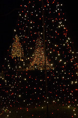 CW349 Longwood Gardens Christmas Lights (listentoreason) Tags: usa night america canon unitedstates pennsylvania scenic favorites places longwoodgardens ef28135mmf3556isusm holidaylighting score30