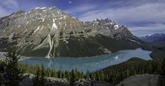 Peyto Lake (Philip Scott Johnson) Tags: canada alberta banff albertacanada banffnationalpark peytolake canadianrockies caldronpeak mtpatterson mountpatterson