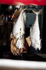 Auswahl-5944 (wolfgangp_vienna) Tags: thailand island asia asien harbour insel ko seafood hafen trat kut kood kokood kokut kohkut aoyai