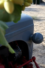 IMG_0381 (ACATCT) Tags: old españa tractor spain traktor agosto toledo antiguo massey pistacho tembleque barreiros 2015 bustards perdices liebres avutardas ff30ds r350s