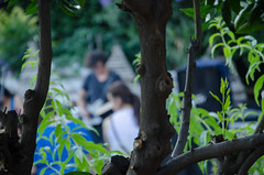 Familea Miranda + Droste + TÚMtum @ Endémico (vibescl) Tags: droste túmtum famileamiranda endémico autómata felipemaldini bcore experimentosruraleslaboratoriodiscográfico chile sanfelipe