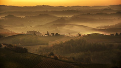 An autumn morning (rinogas) Tags: italy piemonte langhe alba novello vineyards unesco rinogas