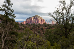 IMG_6520 (dvdstvns) Tags: arizona cathedralrock sedona