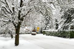 CAUTION (Ben McLeod) Tags: oregon portland sellwood sellwoodbluff winterstorm snow