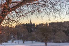 Wohl der schönste Popo der Welt (Andreas Schwind) Tags: popo nackt wald schnee kassel schön hinten unshärfe