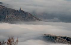 Château de l'Ortenbourg et du Ramstein, Alsace, France (Etienne Ehret) Tags: château ortenbourg ramstein alsace france vosges brume brouillard paysage light lumière landscape hiver froid frozen givre winter nikon d750 300mm f4