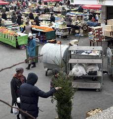 Christmas Tree (roksoslav) Tags: zagreb croatia 2016 dolac nikon d7000 nikkor28mmf35 market tržnica plac