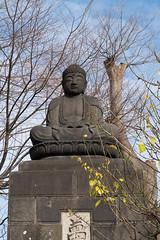 Perched on top (Dominic Sagar) Tags: fujifilm japan t050 t100 t200 xt1 buddha buddhist temple akitashi akitaken jp