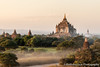 Low Sun and Mist over the Temples of Bagan, Myanmar (AnthonyGurr) Tags: myanmar burma lowsun temples bagan landscape sunset clearsky view traditional mist anthonygurr