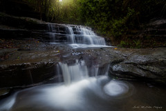 **Forest Light** (damian.mccudden1) Tags: landscapes nature fineart qld australia sunshinecoast waterfalls water rocks trees leaf swirl light afternoon canon samyang forest explore