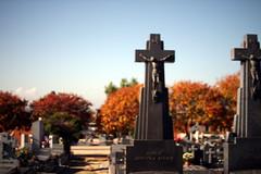 # a (Lys de Kerk) Tags: madrid spain eos 450d eos450d canoneos450d canon sigma sigma30mm14art 30mm 14art 14 nd nd30 nd3000 ndfilter graveyard fuencarral cementario cementariofuencarral