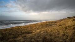 Düne und Meer (blichb) Tags: 2017 deutschland leicaq leicasummilux11728asph meer nordsee schleswigholstein strand sylt wennigstedt wind blichb düne
