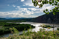 Yukon River/Klondike River bei Dawson City