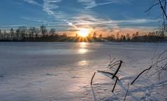 Sun rays on ice [Explored 30.01.2017] (marcmayer) Tags: winter landscape sonnenuntergang see kalt cold sunset light ice eis frozen gefroren nikon d5200 sigma natur nature sun rays sonnenstrahlen sunbeams beams lake trees bäume