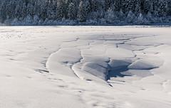 Cerknica Lake (happy.apple) Tags: dolenjejezero cerknica slovenia si winter zima slovenija sneg cerkniškojezero cerknicalake intermittentlake