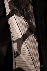 Blumenwalzer Nußknackersuite (Ulrike Schumann) Tags: harfe harp hands shadow strings fingers hände finger saiten schatten nusknackersuite blumenwalzer harfensolo harpsolo concert orchestra konzert orchester girl youngwoman harfinistin music musicians musik musiker