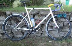 Flashy fixie (Tysasi) Tags: gt talera fixie fixedgear 650b randonneuse randonneur bike discbrake internalwiring tarckbear sweetfixie