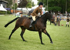 Novice Hunters (Elrenia_Greenleaf) Tags: show royal highland 2015 royalhighlandshow novicehunters