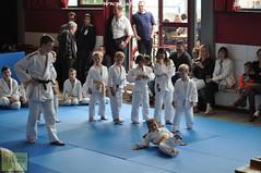 Judo-habay044