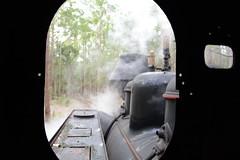 TIMBERTOWN (rob3802) Tags: rail railway steam nsw locomotive steamlocomotive timbertown wauchope