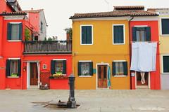 L'île de Burano, Italie (3)