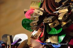 DSC_11772015_02_26_4416-Ronei Brognoli (Ronei Brognoli) Tags: love brasil amor riograndedosul autofocus gramado serragaúcha cadeados gramadocity lovepadlock roneibrognoli fontedoamoreterno eternallovefountain