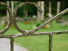 Through a gate (Jonne Naarala) Tags: digilux2 finland leica leicadigilux2 graveyard cemetery