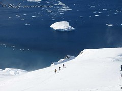 Backcountry skiing the white continent