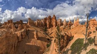 *Bryce Canyon @ Peek a Boo Panorama*