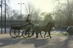 _DSC9623 (L'Arro Tino) Tags: londra london horse cavalli cavallo carrozza calesse
