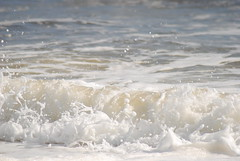 DSC_0142 (sarahk5446) Tags: gulfofmexico gulfcoast water waves wildlife gulfshores ocean orangebeach outside nautical nikon natural nature sand summer spring sea sky swim surf sun seashore alabama adventure america floridastateparks florida