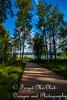 IMG_8526 (Forget_me_not49) Tags: alaska alaskan wasilla lakes lucillelake boardwalk pier sunrise waterways