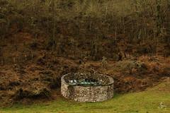 Cortín de Marcos (Vanessa RG (Vanessa Valkyria)) Tags: asturias landscape paisaje nature naturaleza forest woods bosque