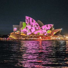gumshoe stealers (bhautik_joshi) Tags: lights waterfront harbour au sydney vivid australia circularquay projection newsouthwales darlingharbour therocks operahouse mapping sydneyharbour sydneyoperahouse vividfestival vividfestivalsydney vivid2015 vividsydney2015 vividfestivalsydney2015